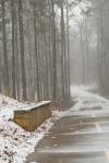 snow day-003