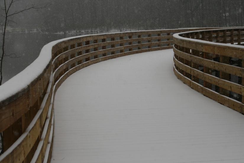 snow day-005