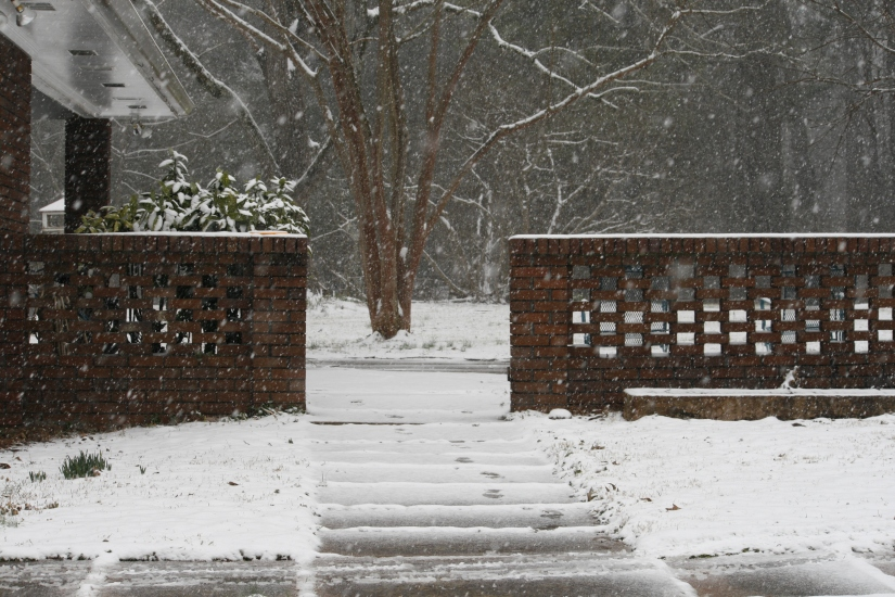 snow day-009