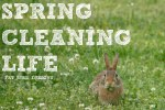 Spring Cleaning Life-Fat Bird Designs